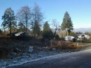Picture of Point Roberts Parcel Number 415335-489036